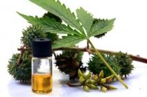 Olej rycynowy (oleum ricini)